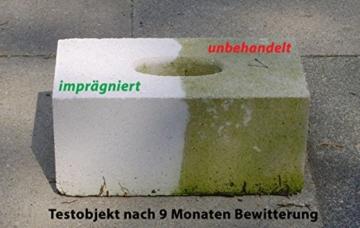 Nanoprotect Steinimprägnierung | Profi Qualität | Vorbeugend gegen Grünbelag und Einschmutzung | 10 L für ca. 80-120 m² - 3