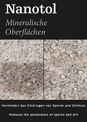 Steinversiegelung Steinimprägnierung - Nanotol Protector für mineralische Oberflächen - Nanotechnologie Versiegelung für offenporige Steine (250 ml - 5m²) - 2